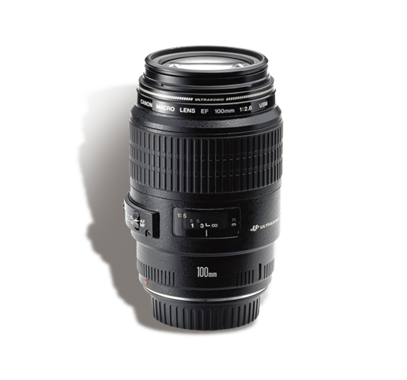 CANON 100 mm f/2.8 Macro INR 800/Day