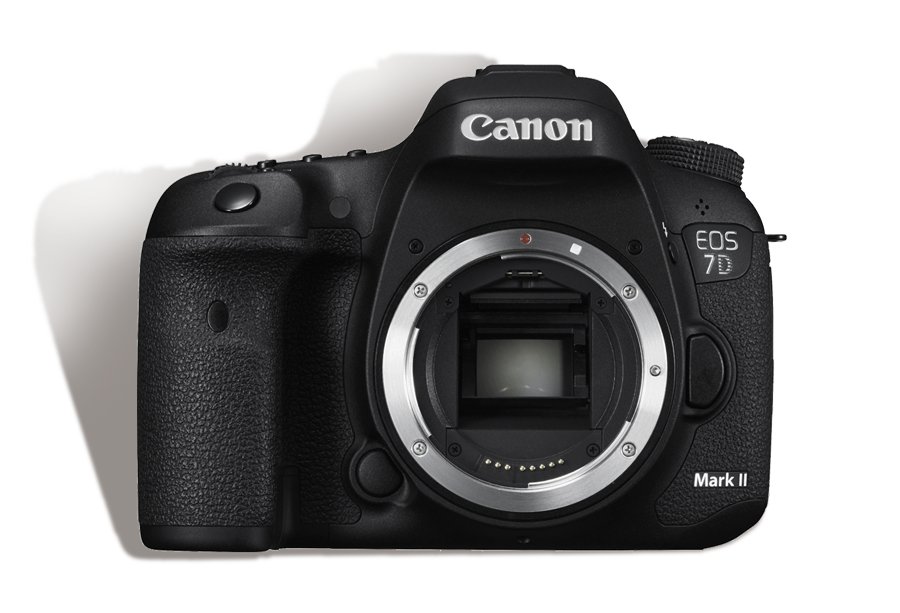 Canon 7D Mark II Body       INR 1500/Day