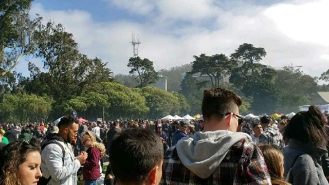 4/20 4:20 Hippie Hill SF  #ganjier