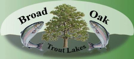 Broad Oak Lakes