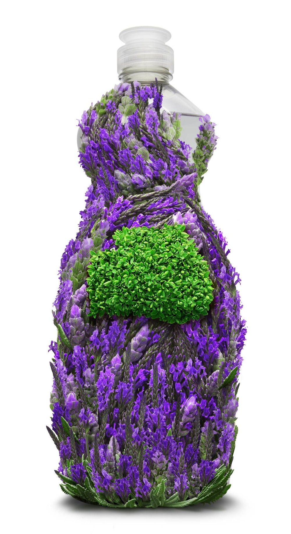 Lavender_DishWashing_09.jpg