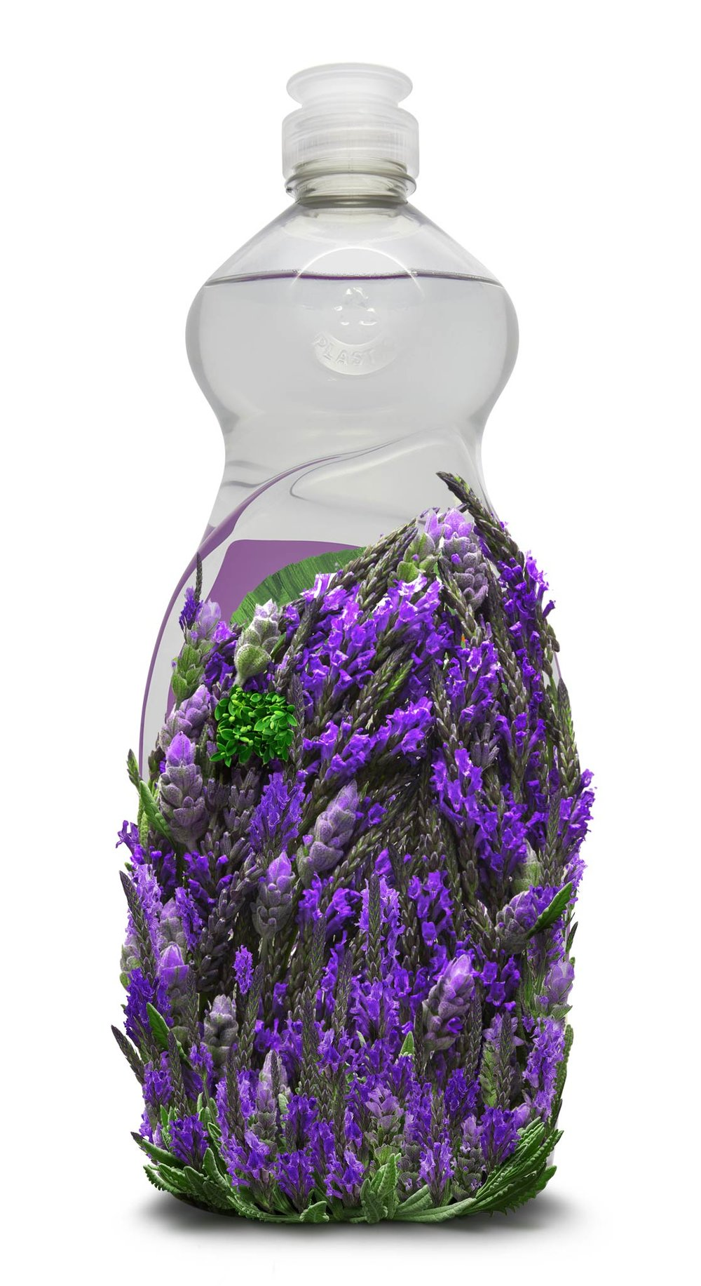 Lavender_DishWashing_15.jpg