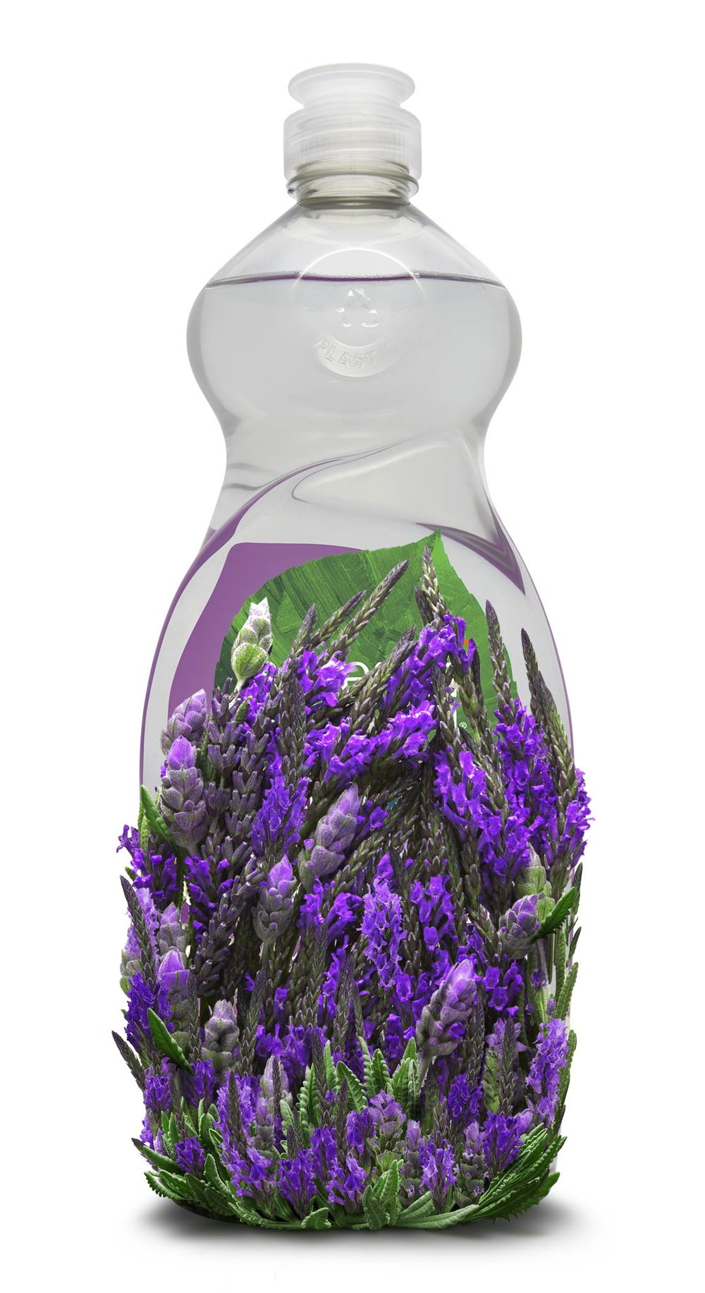Lavender_DishWashing_16.jpg