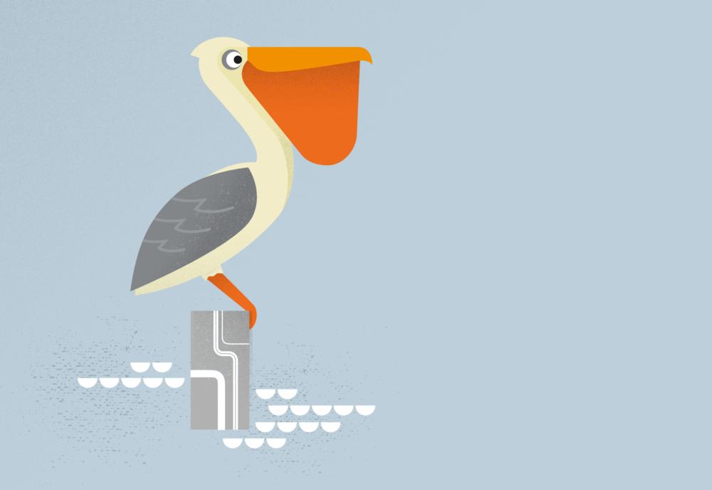 Pelican-character_alt.png