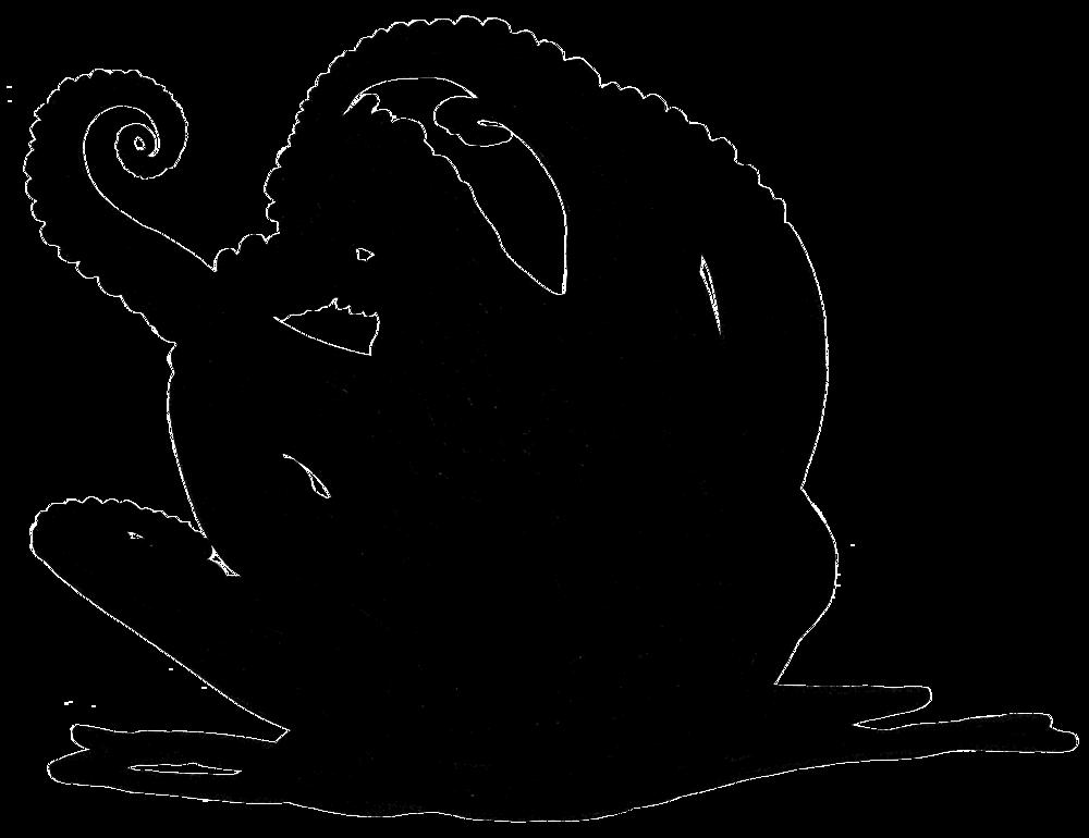 Tintenfisch-sw.jpg