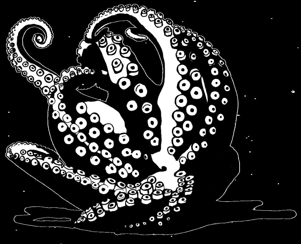 Tintenfisch-Zeichnung2.jpg
