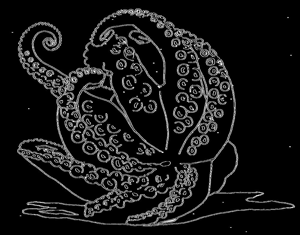 Tintenfisch-Zeichnung.jpg