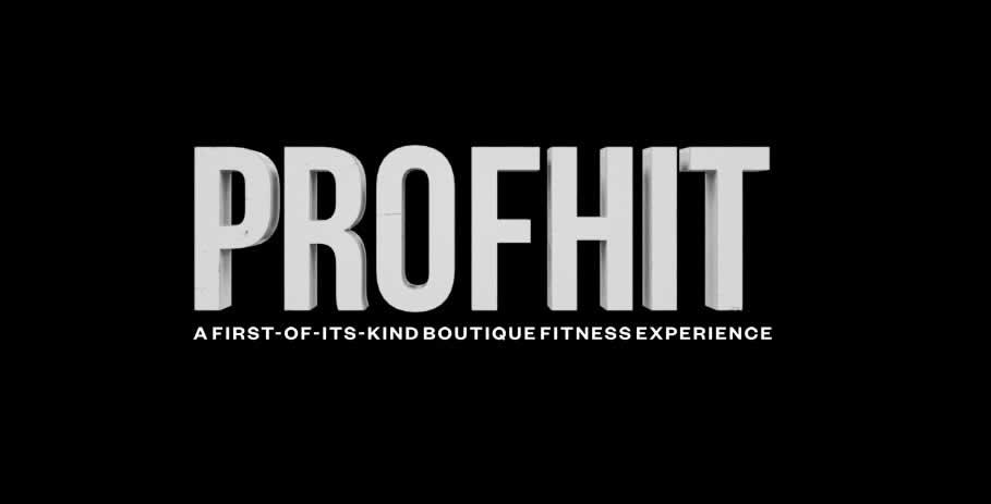 profhit logo.jpg
