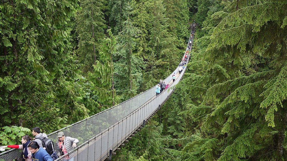 Capilano_Suspension_Bridge.jpg