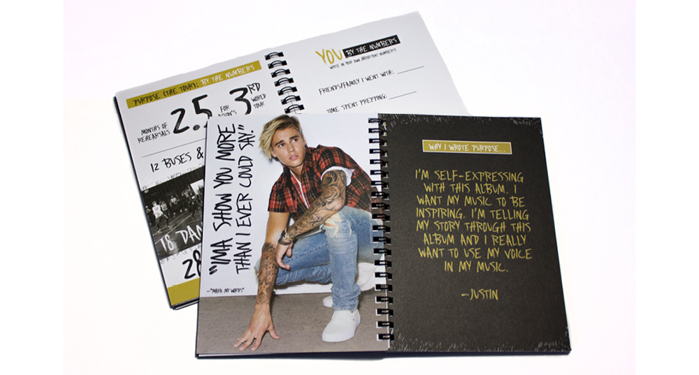 BieberDetails3.png
