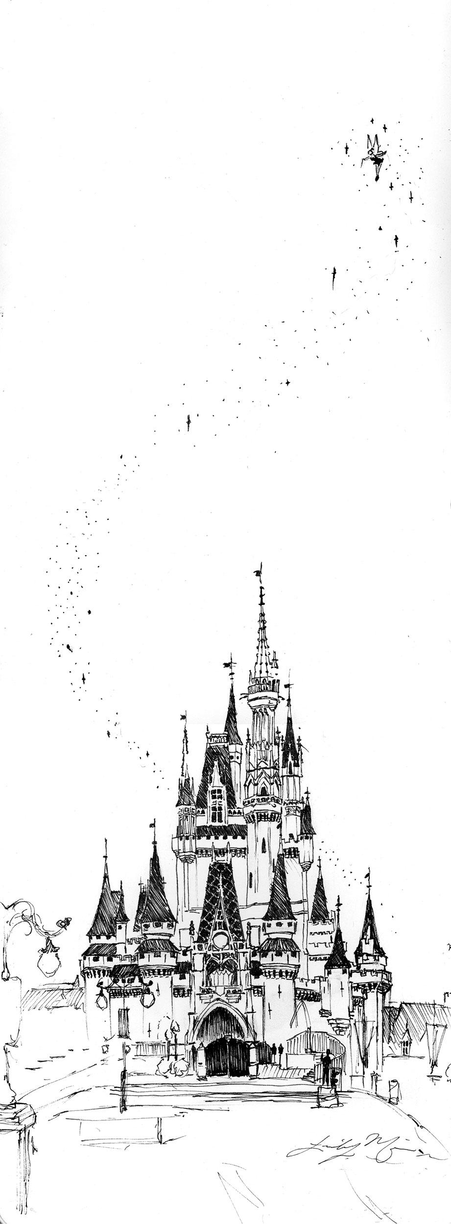 DisneyCastle_2500.jpg