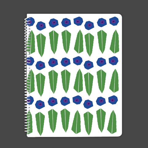 Modern Huckleberries Journal