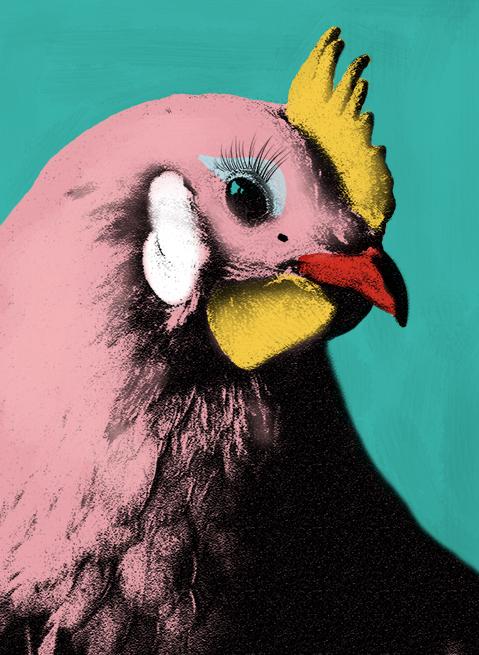 glamour chicken.... chicken