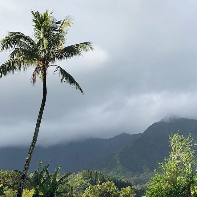 Kauai morning....