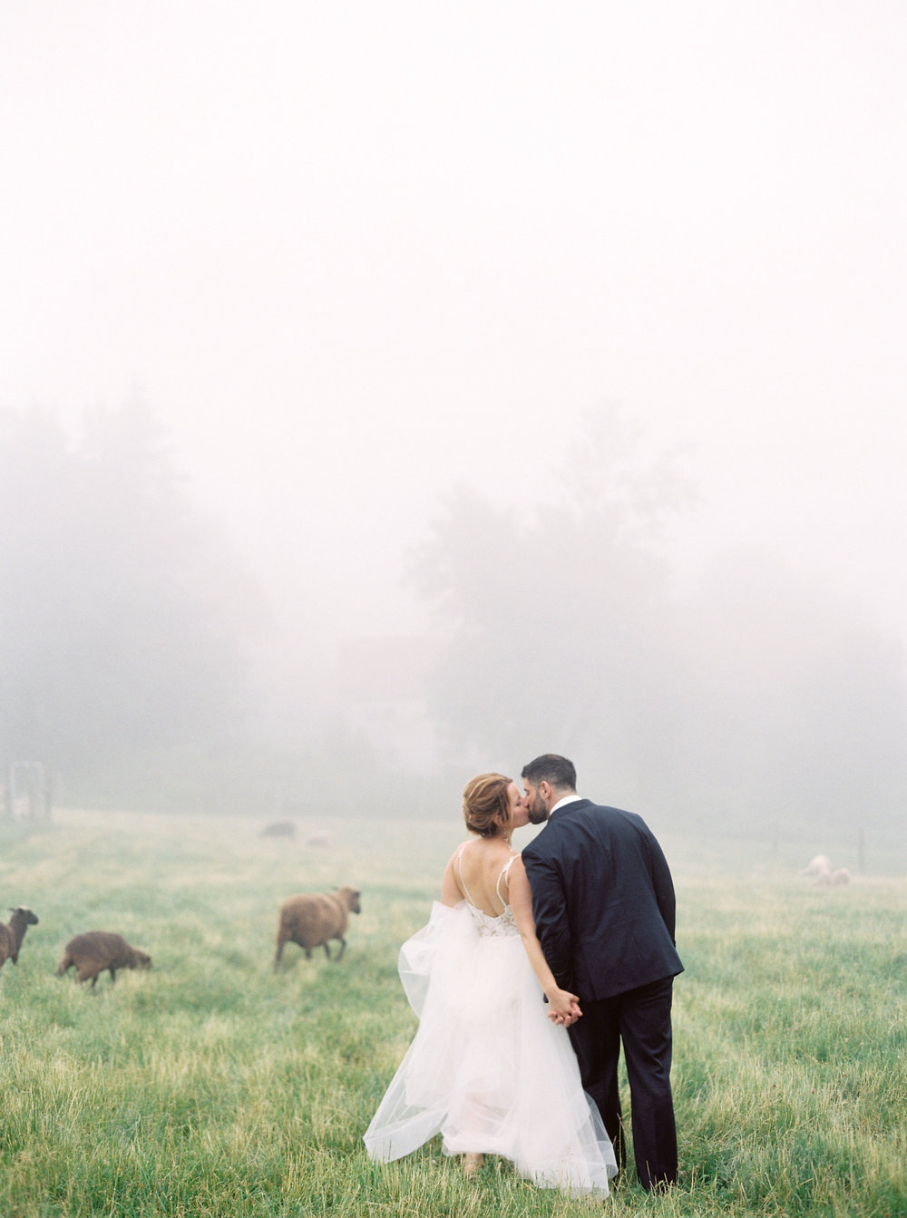 Photography: Alicia Ann Photographers