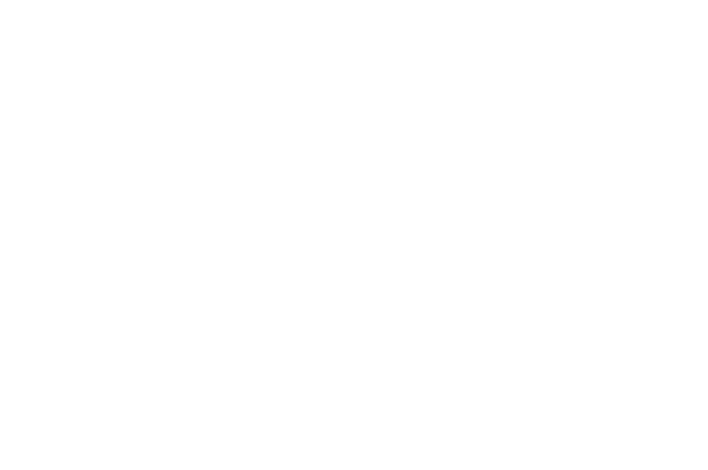 BEST WOMAN FILMMAKER - Barcelona Planet Film Festival - 2017.png