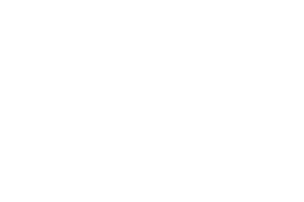 warder_logo_WHITE.png