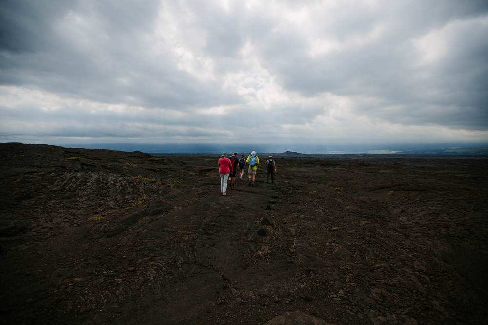 We were able to go off-trail, see the Koa'e Kea, and learn about native plants, thanks to this special hike given as part of National Park Week.