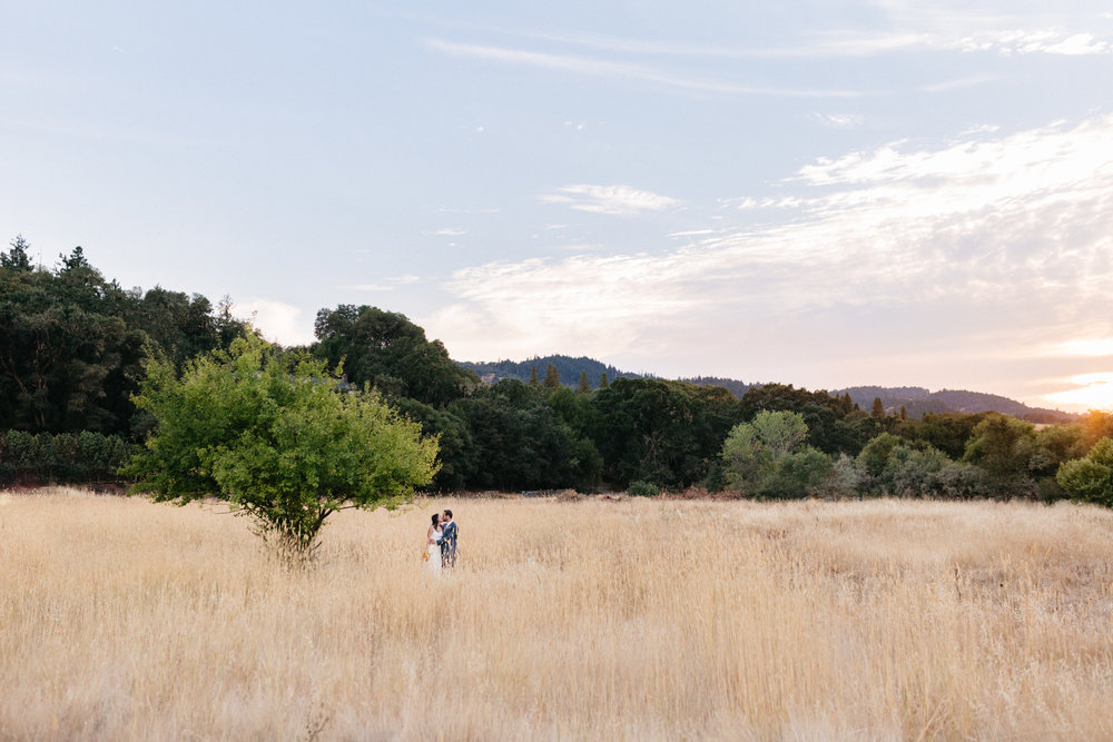 Amber & David  //  Mendocino, California