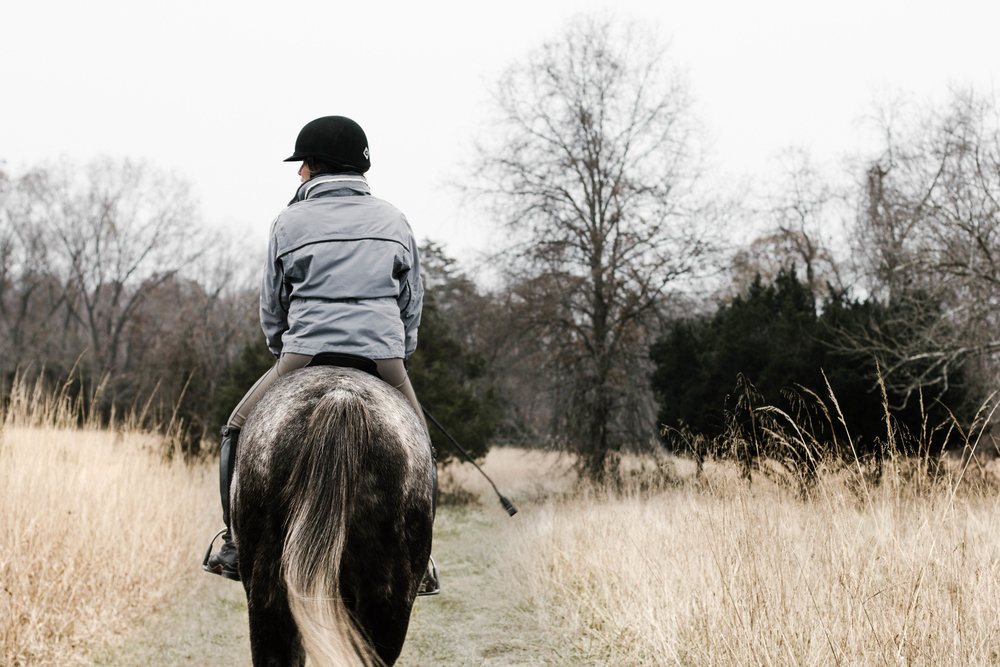 Are you interested in learning more about Squarespace and it's ability to fit into your busy equestrian lifestyle? - Feel free to shoot me an email with any questions you may have!