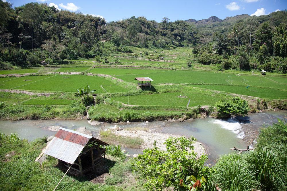 INDONESIA Sulawesi Toraja—2016 August 30 01;07;17.jpg