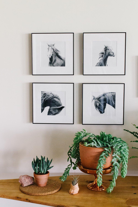 Equine art framed simply.