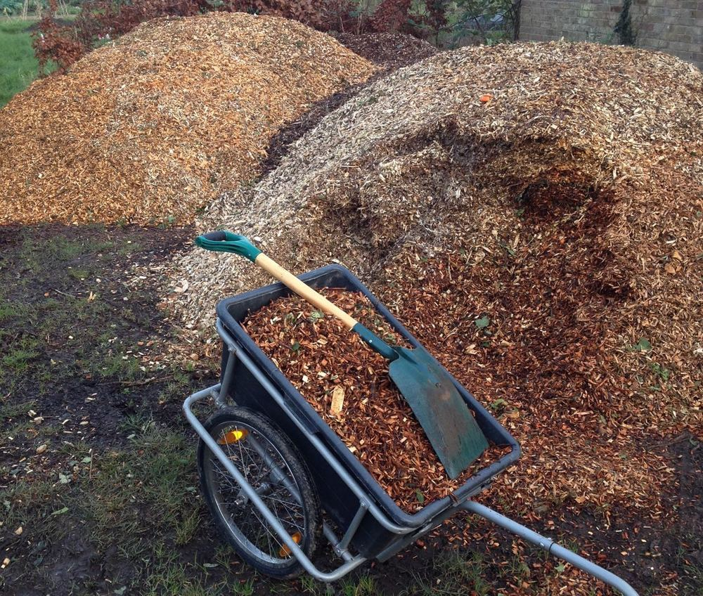 January 2016. picking up some bark chippings from a local allotment site using a cycle trailer.