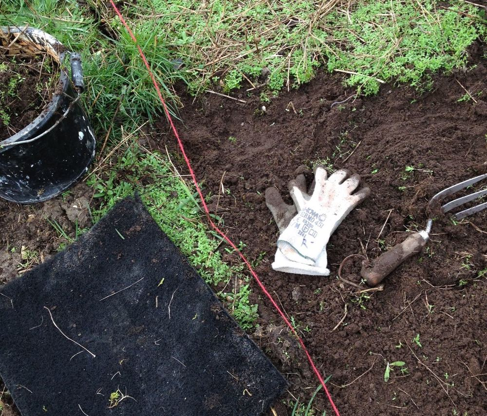 Trying out hand-prepared very shallow prep of beds for seed sowing. We didn't want to lose top soil.