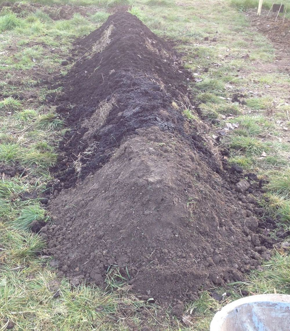 Our Hugel-lette: has more soil, meadow cuttings, upturned turf and all our Amey Cespa soil conditioner supplies, plus some spare soil from the edge cutters.  We just need a bit more earth on the top now and to work out what to plant on it.