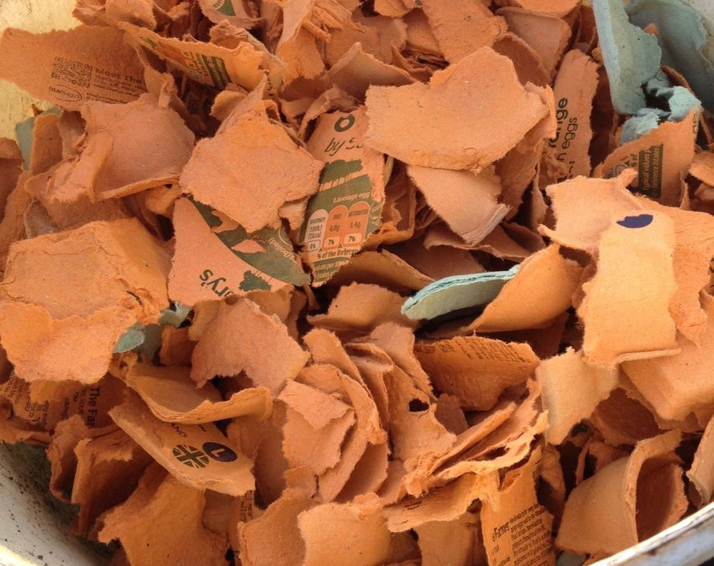 Egg box cardboard for the compost bin