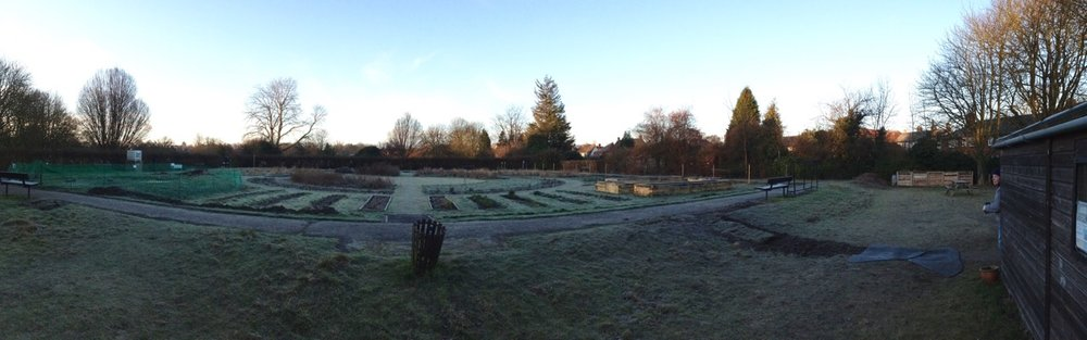 Around 8am, frost on the ground and a frozen pond.
