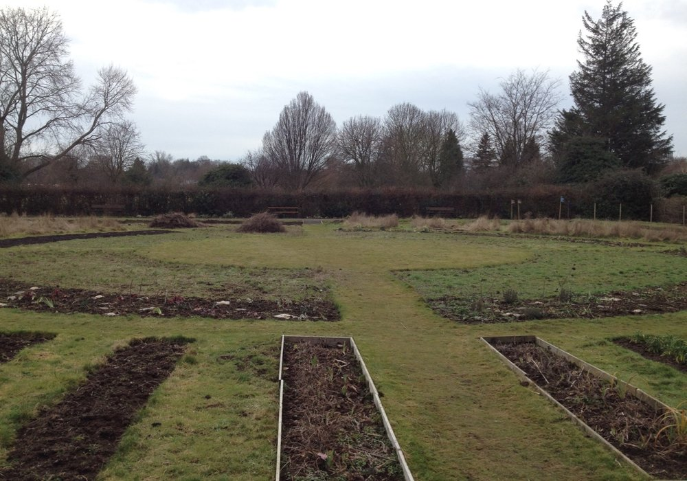 We finished the scything, ready to prepare the annual Pictorial Meadow beds