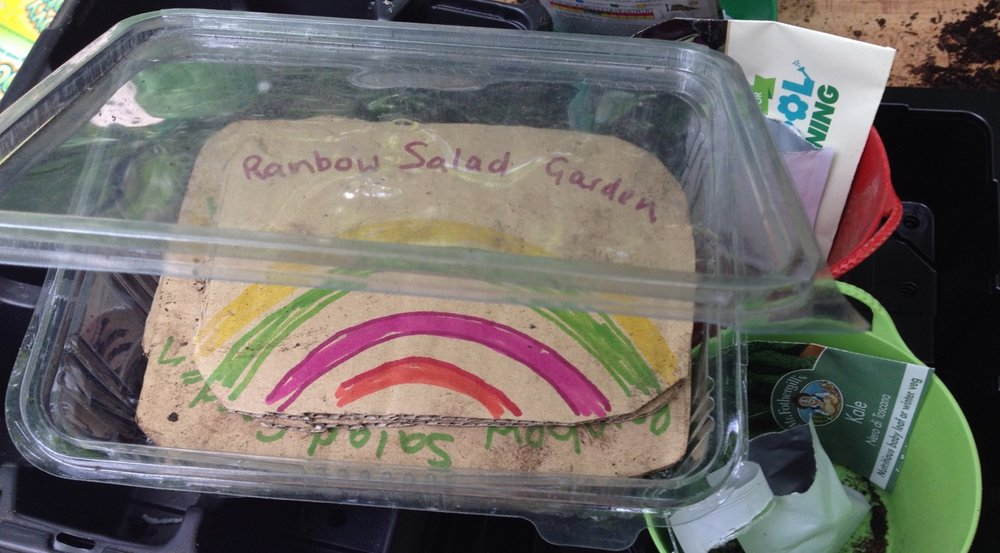 Children (and adults) can have fun making labels for their growing crops, in this case from cardboard.