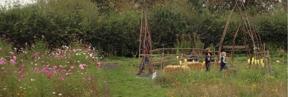 Making the willow circle. The decorative hoops are from park dogwood and allotment willow. The straw bales inside it are very popular with children. One of them said yesterday that 'the tent was too hot', so maybe we need to add air conditioning.