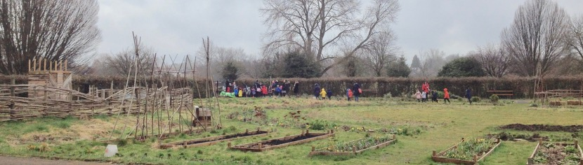 This might be the first time we have had a visit from a local school - lovely to meet you Queen Emma's reception class, despite the light drizzle, and great to show you some of the garden for your 'Spring project'.