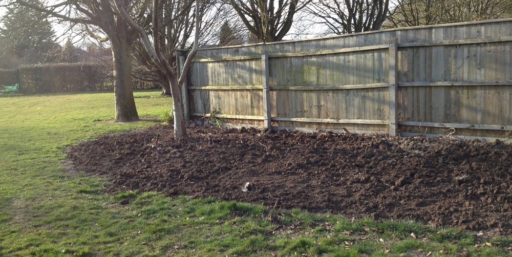 The ugly bed by the fence - a first step in making a mini meadow