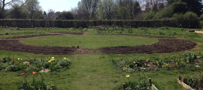 Almost ready to sow the meadow beds...