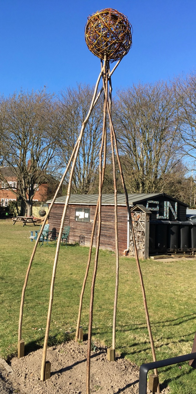 The start of a new climbing French bean wigwam. We hope they won't all be at the top of this VERY TALL structure. Thanks to the willow weavers and hazel crafters.