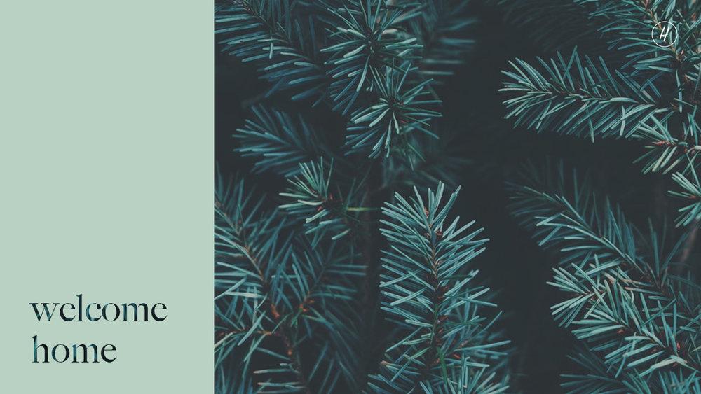 DECEMBER 30 - JANUARY 6