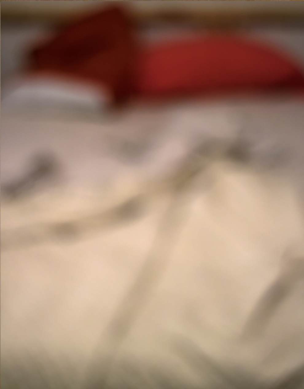 Screen Shot 2018-01-12 at 1.51.06 PM.png