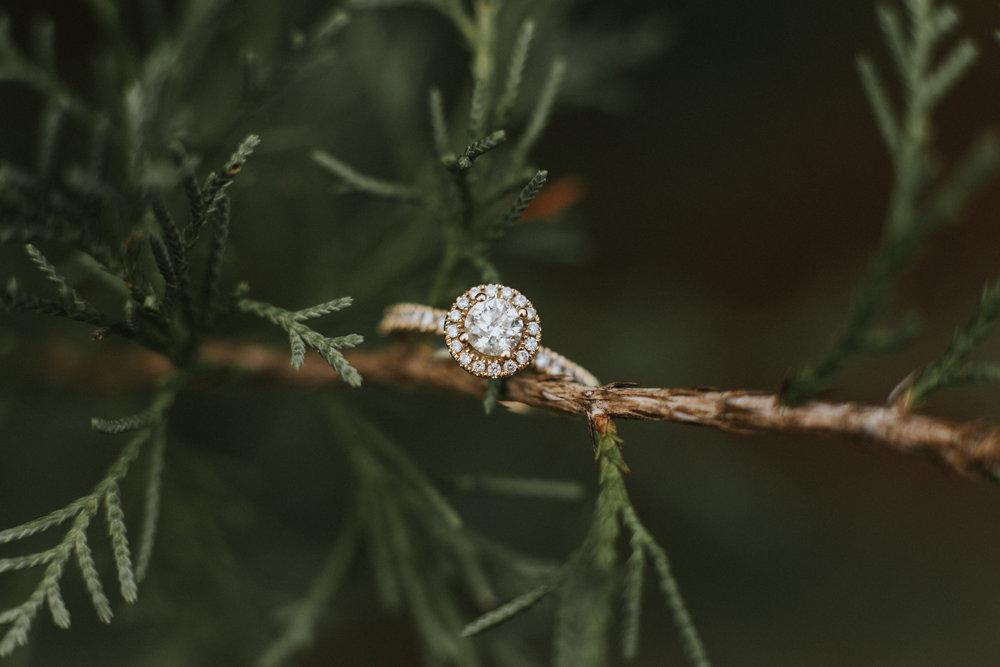 Mattie Bell Photography - Lena & Austin Engagement-94.jpg