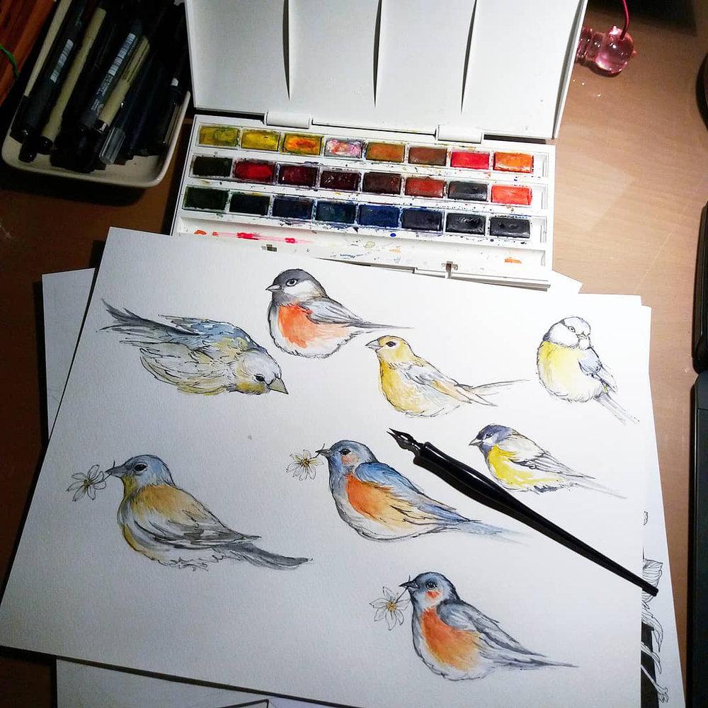 sketch photo.jpg