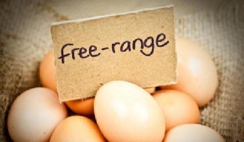 Step 1 - Flour & Eggs -