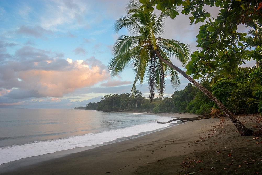 Beach+8.jpg
