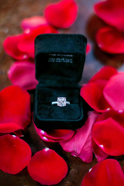 surprise_proposal_ 0124.JPG
