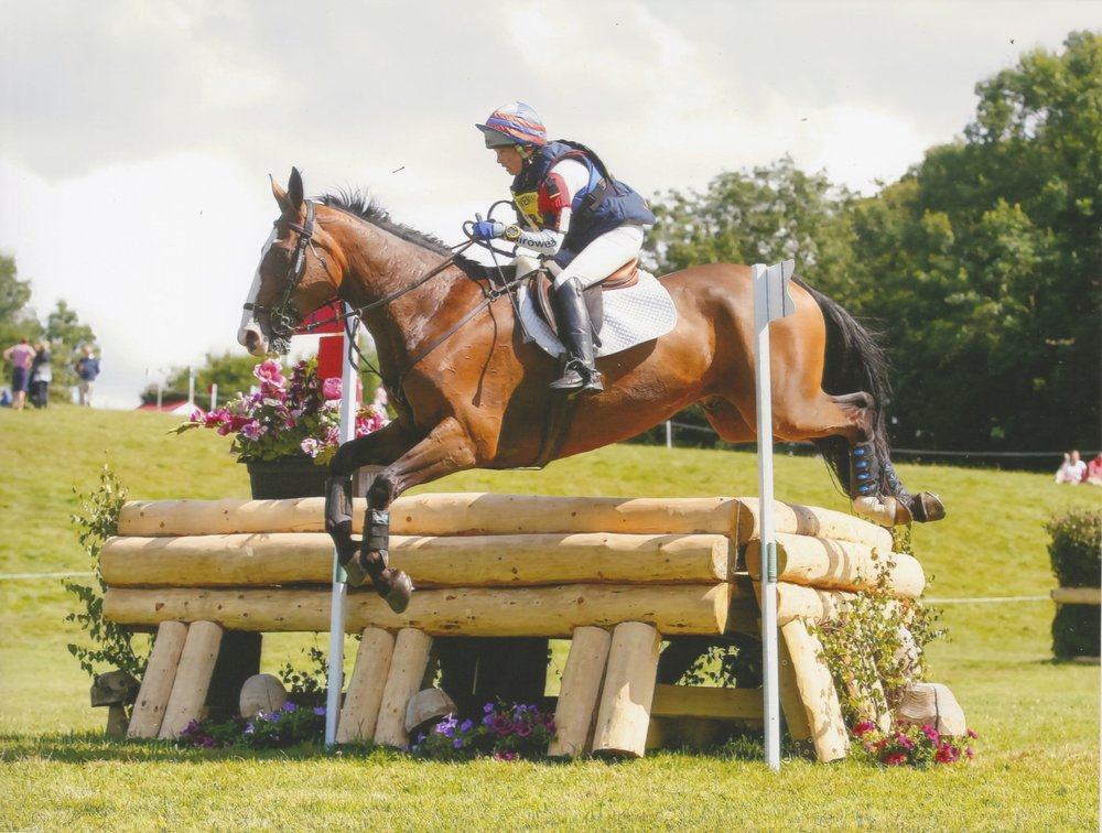 Mr Potts - Gatcombe 2015 - 03.jpg