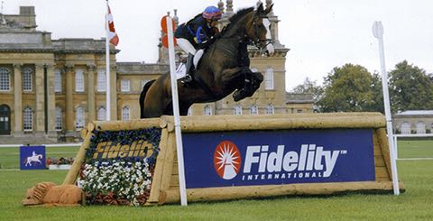 Mr Potts - Blenheim 2011.jpg