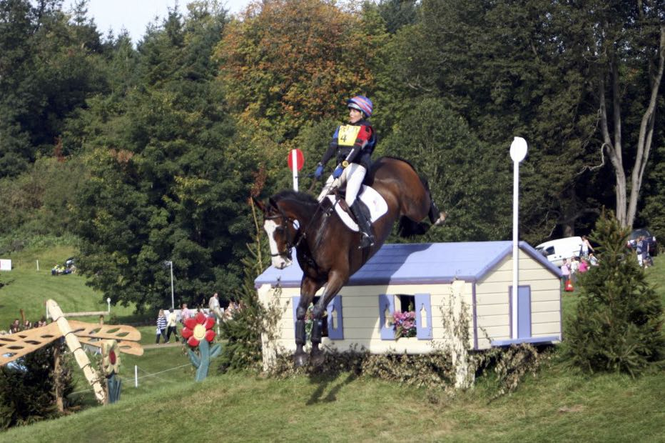 Mr Potts - Blenheim 2012.jpg