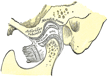 Tmj closed jaw fig 5