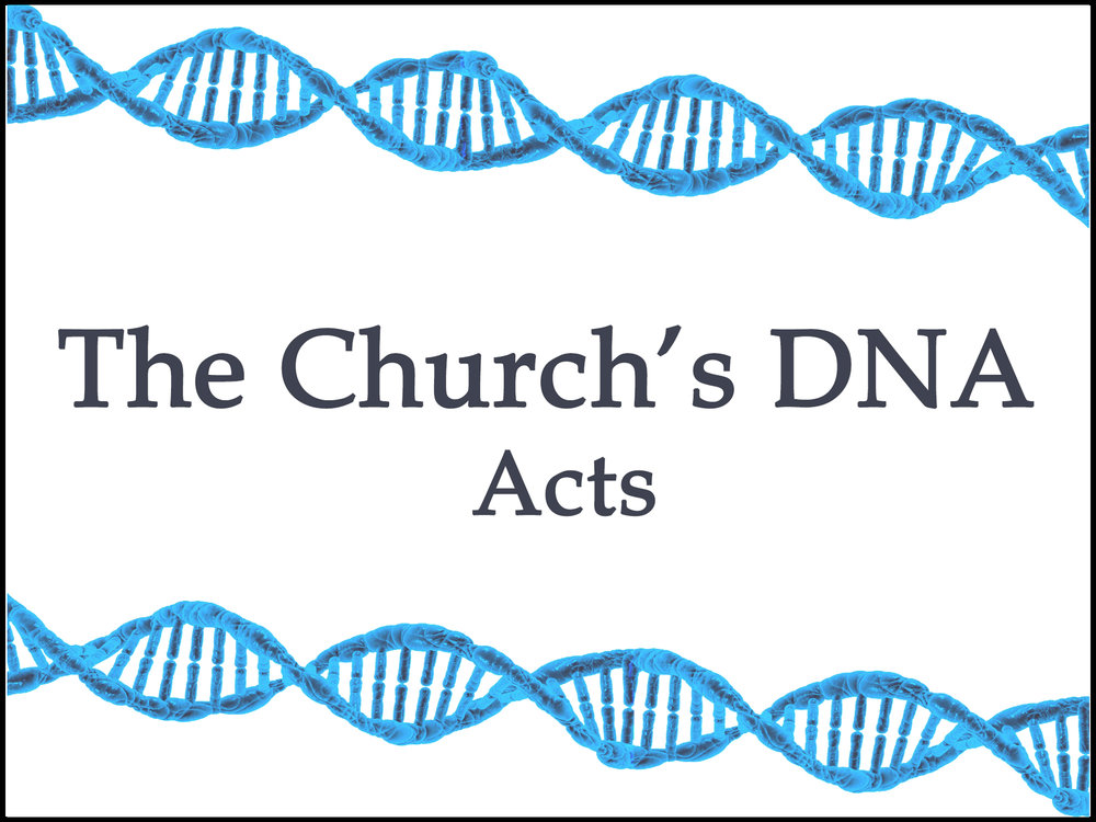 DNA series.jpg
